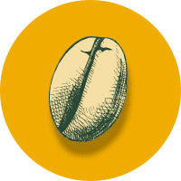 Medellin Secret Costa Rica smaak geel